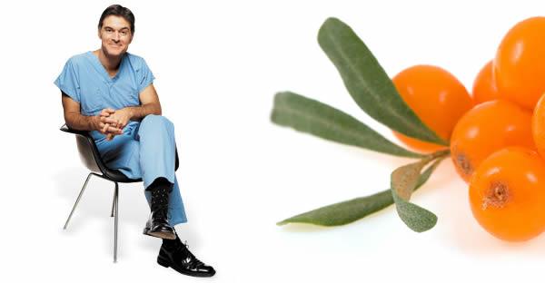 Omega 7 Kaynağı Kır İğdesinin İnanılmaz Etkileri