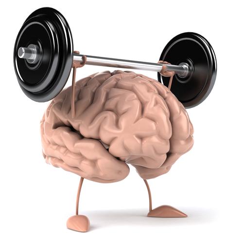 Beyninizi Besleyin!