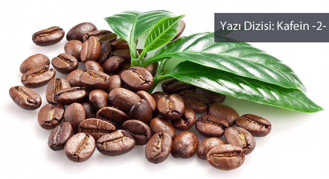 Kafein sağlıklı bir besin mi?