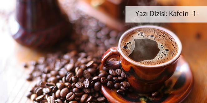 Kafeini tanıyor musunuz?