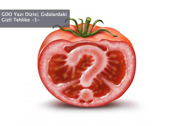 Gıdalardaki Gizli Tehlike: GDO-1