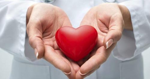 Organ ve Doku Nakline Yasal ve Etik Açıdan Bakış